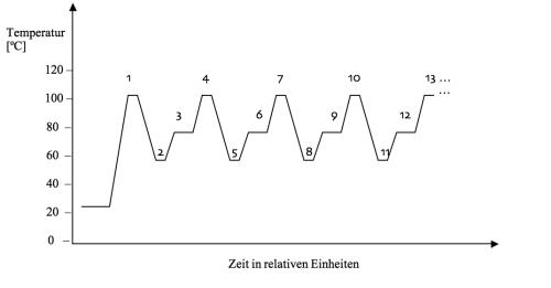 Phasen der PCR
